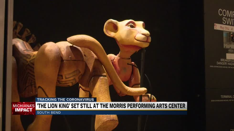 'The Lion King' still at the Morris despite cancellation