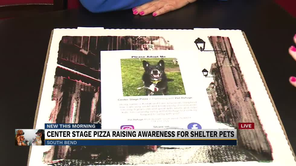 Michiana pizza shop partners with local animal organization to raise awareness on adoptable animals