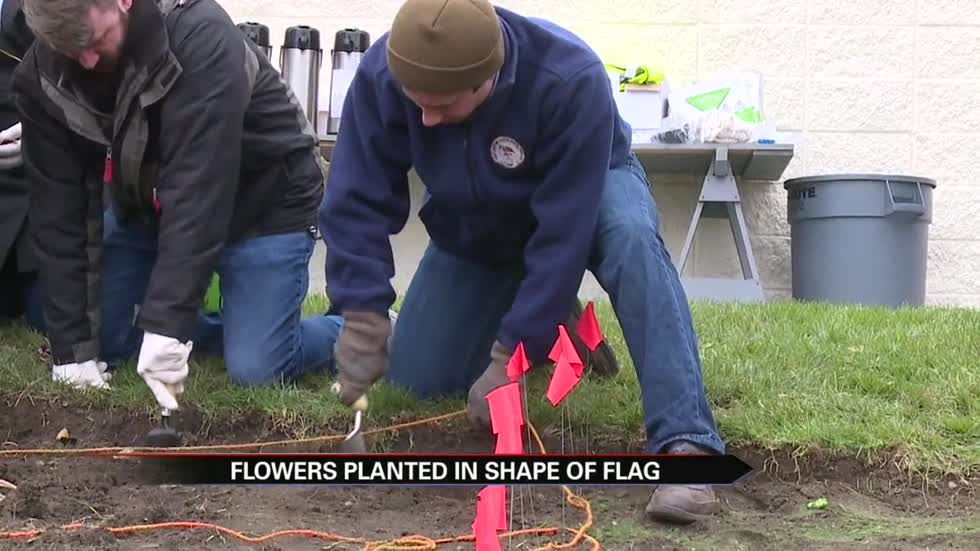 City employees plant tulip bulbs at South Bend Vet Center