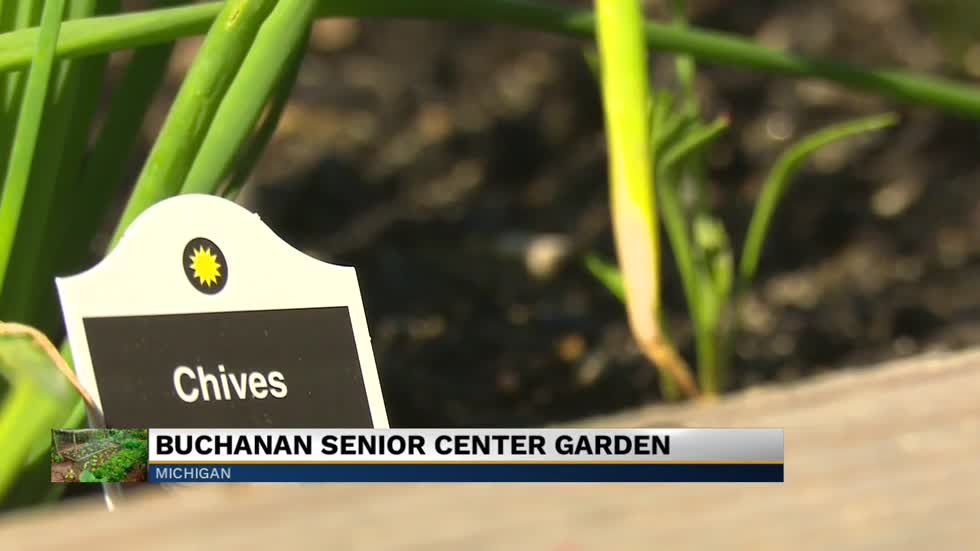 Senior center planting purpose with new community garden