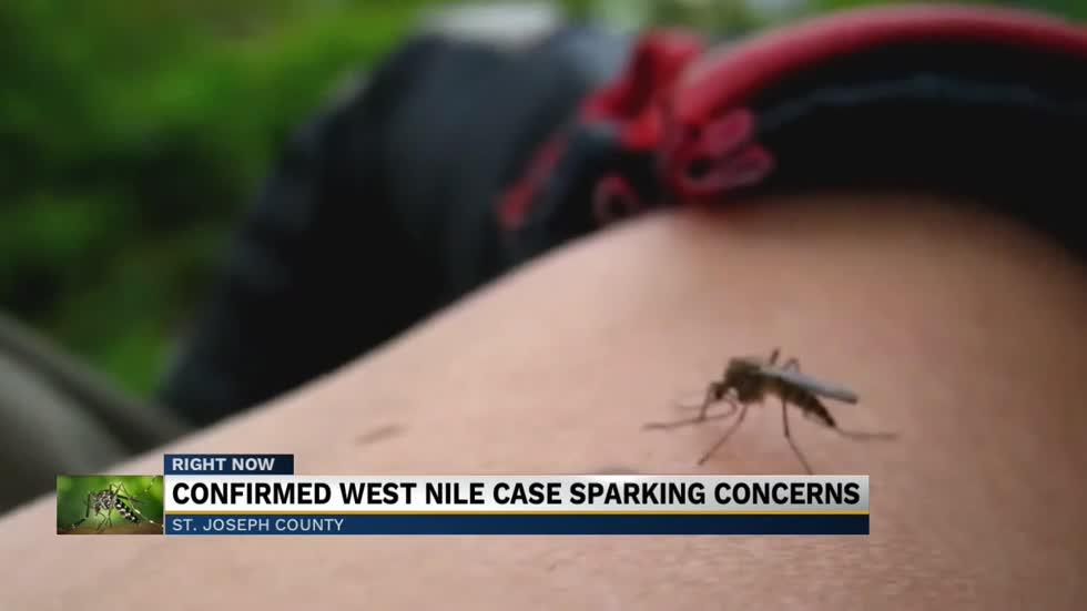 South Bend mosquitoes test positive for West Nile virus, residents concerned