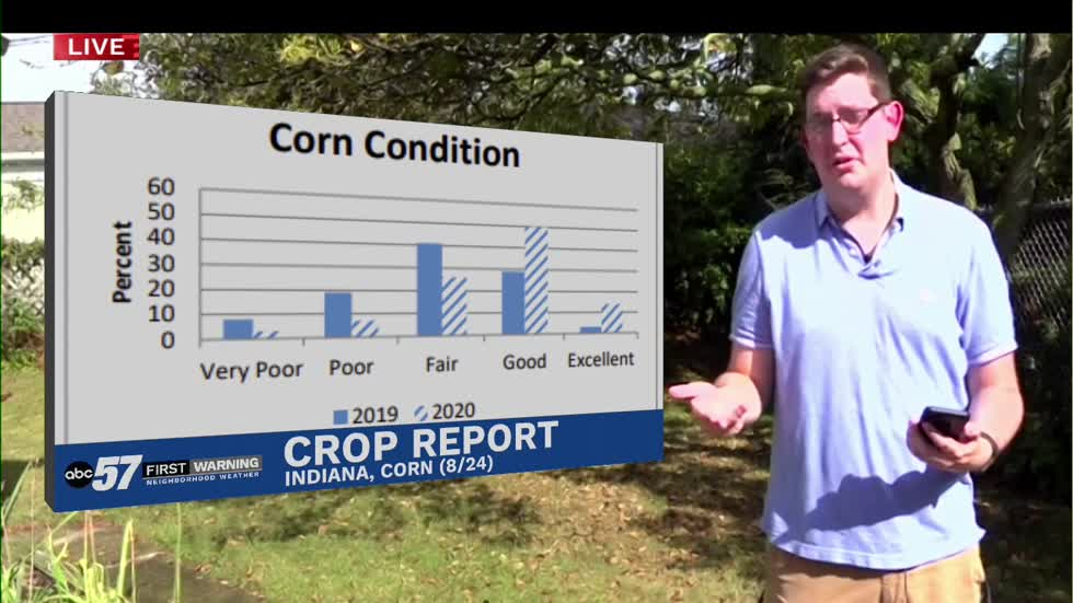 Michiana crop conditions still doing well despite the drought