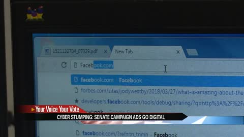 Cyber Stumping: U.S. Senate campaign ads go digital
