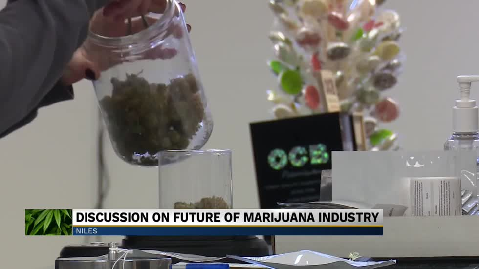Niles City Council discusses future of marijuana industry in the city