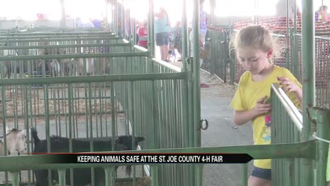 Fair organizers and fair goers share tips for people and animals to stay cool