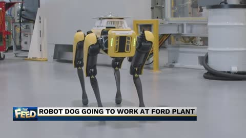 The Feed: I want a robot dog