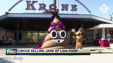 Lion poop for sale