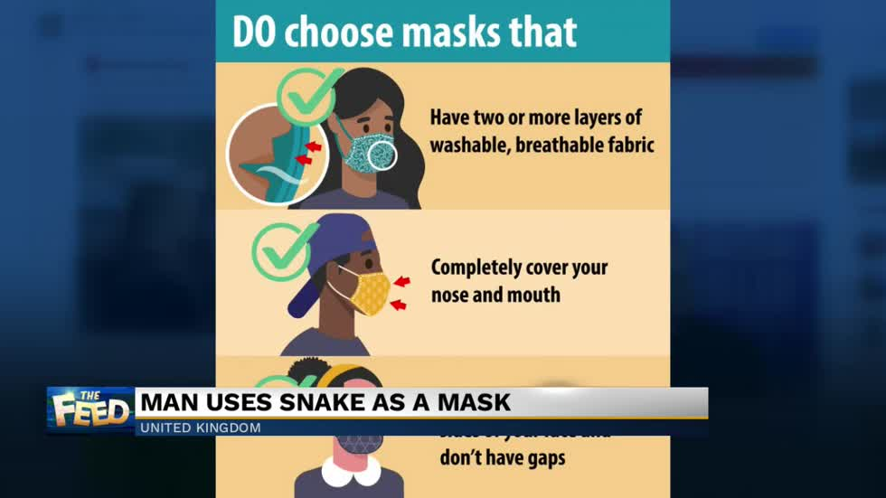 The Feed: Snake mask