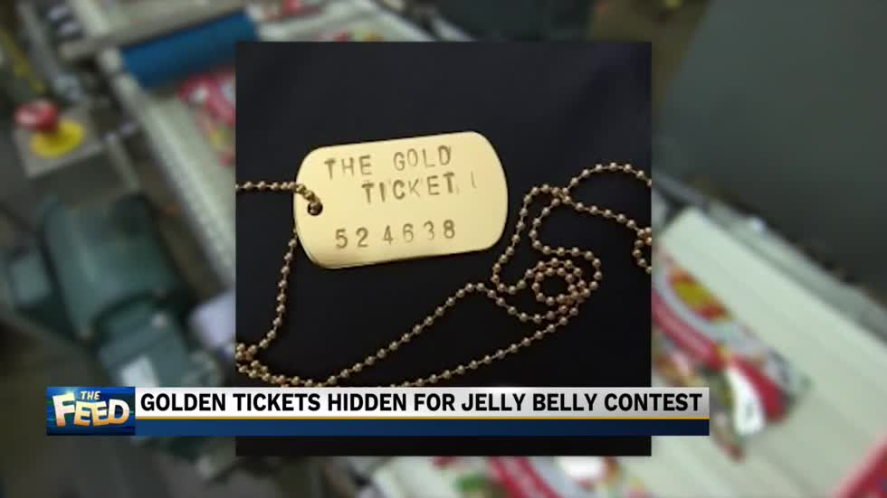 "The Feed: ""I've got a golden ticket"""