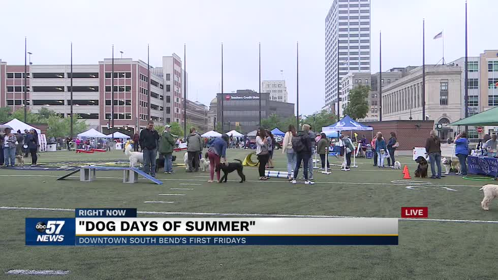 "First Fridays featuring the ""Dog Days of Summer"" event"