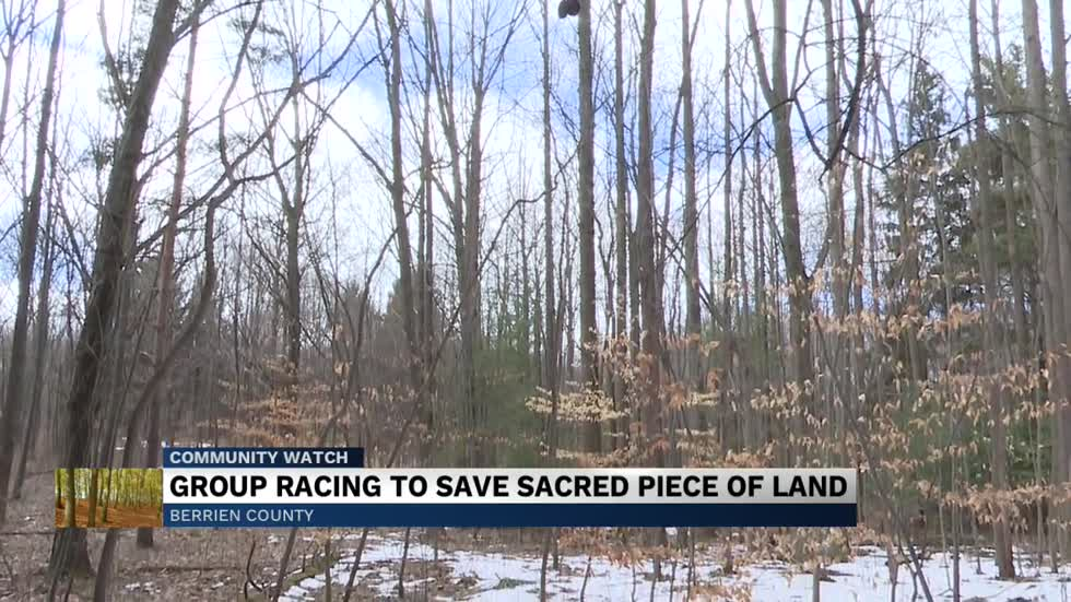 Group racing to save Harbert Road Woods from further development