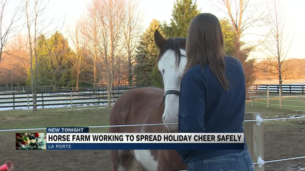 Clydesdale farm works to celebrate the holidays safely