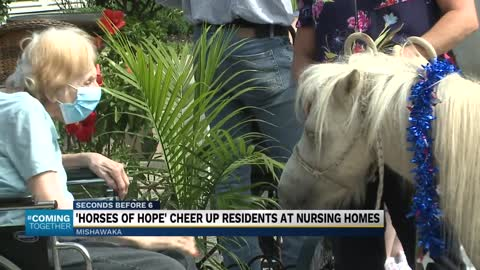 Horses for Hope visit Mishawaka senior center