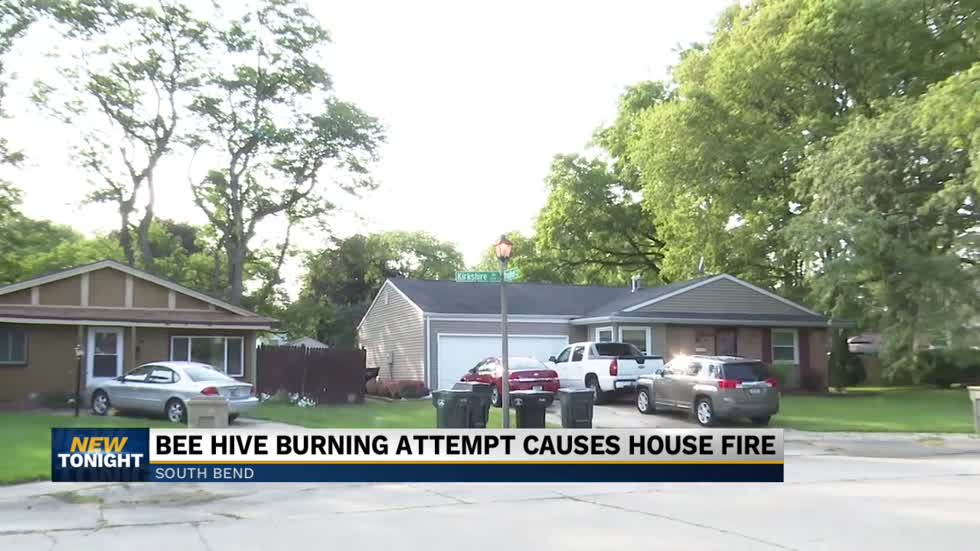 House fire in South Bend partially caused by bees