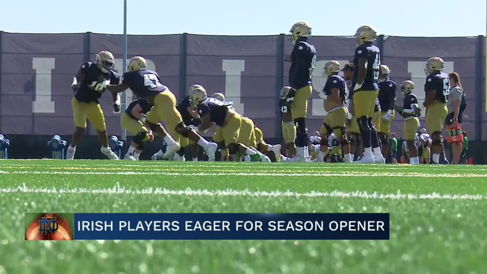 Irish players eager to kick off 2019 season
