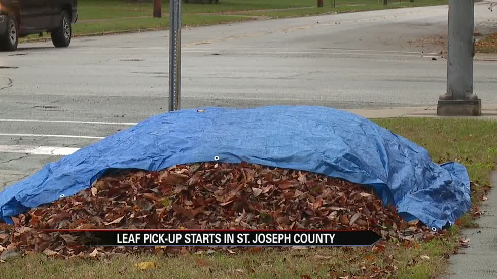 Leaf pick-up begins in St. Joseph County