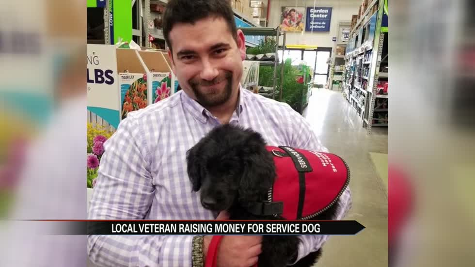 Local veteran asks community for help in purchasing needed service dog