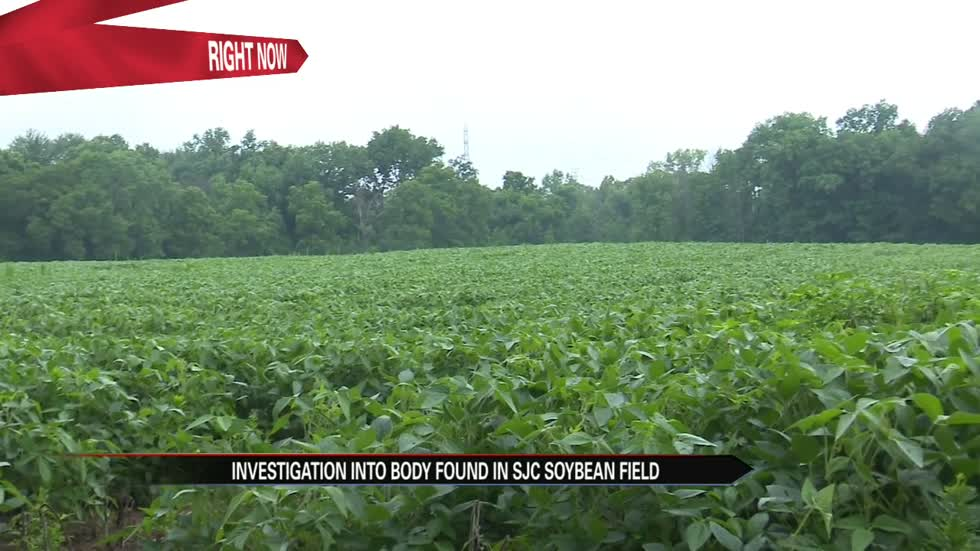 Man's body found in field in St. Joseph County