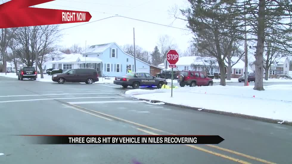 Three children hit by car in Niles