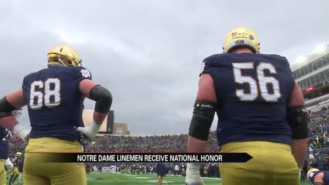Notre Dame's Nelson and McGlinchey earn All-America honors