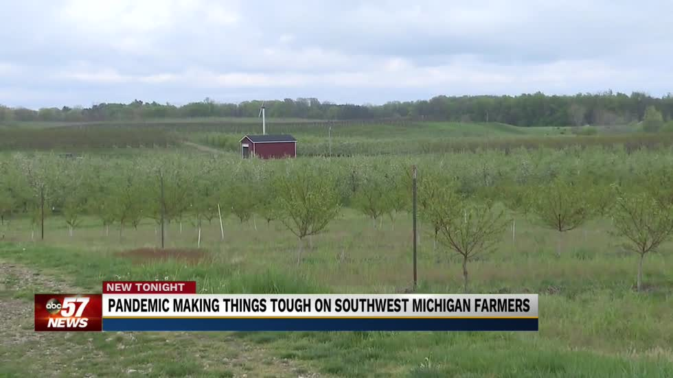 The pandemic's impact on Southwest Michigan's food chain
