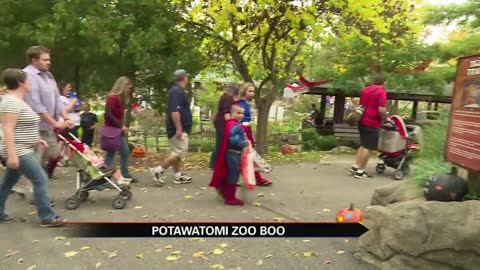 Zoo Boo brings thousands to Potawatomi Zoo