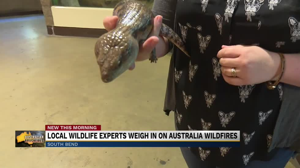 Potawatomi Zoo working to help animals impacted by Australian bushfires