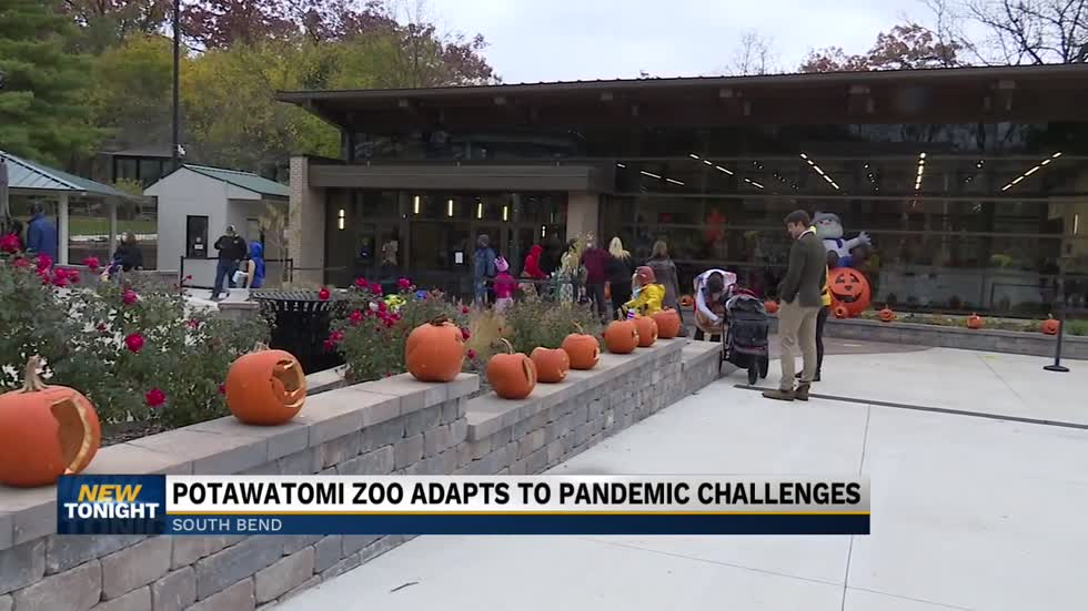 Potawatomi Zoo's 'Zoo Boo' ends Friday