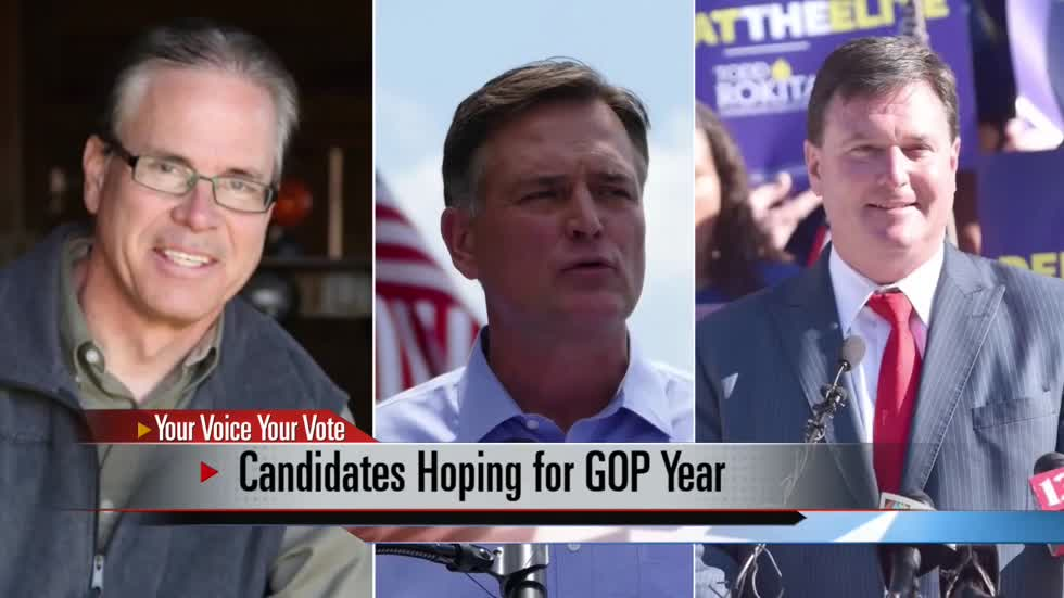 Preview: Primary candidates for U.S. Senate talk to ABC 57 News