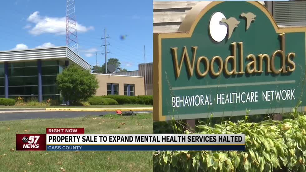 Property sale to expand mental health services halted
