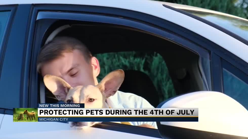 Michiana Humane Society offering discounted microchipping ahead of July 4th