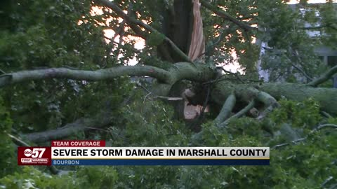 Severe weather leaves massive trees, power lines down in Marshall...