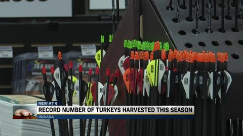South Bend archery business sees increase in sales