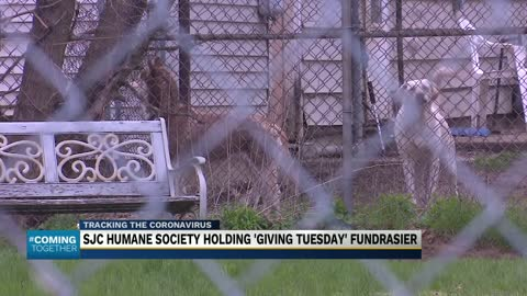 St. Joseph County Humane Society raising money for local animals