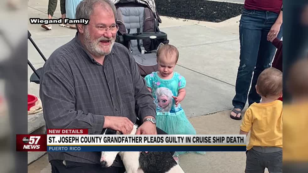 Grandfather pleads guilty in cruise ship death