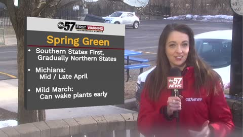 Tracking spring green and likelihood of any March snow