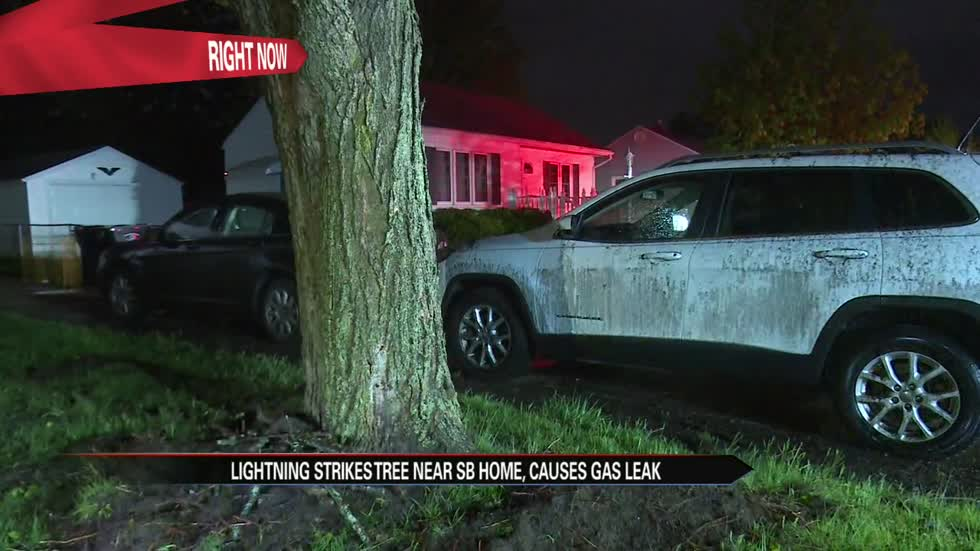 Tree struck by lightning in South Bend causes home gas leak