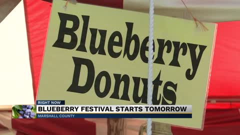 Visitors wait in lines for over two hours for donuts at Blueberry...