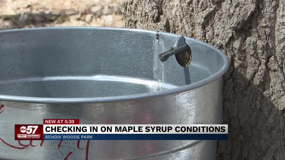 Weather driving Michiana maple syrup season