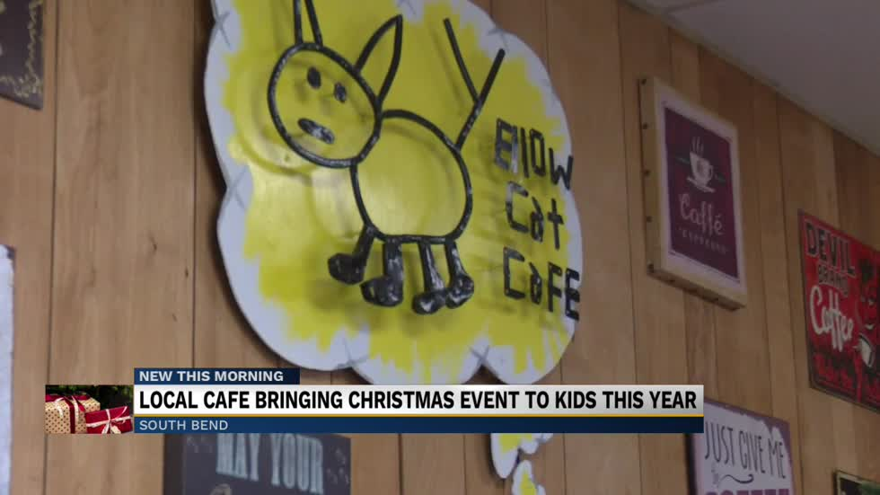 Yellow Cat Cafe gives back despite COVID-19 setbacks