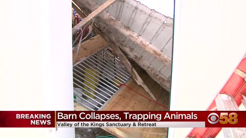 Animals unharmed after barn collapses at Walworth County wildlife sanctuary