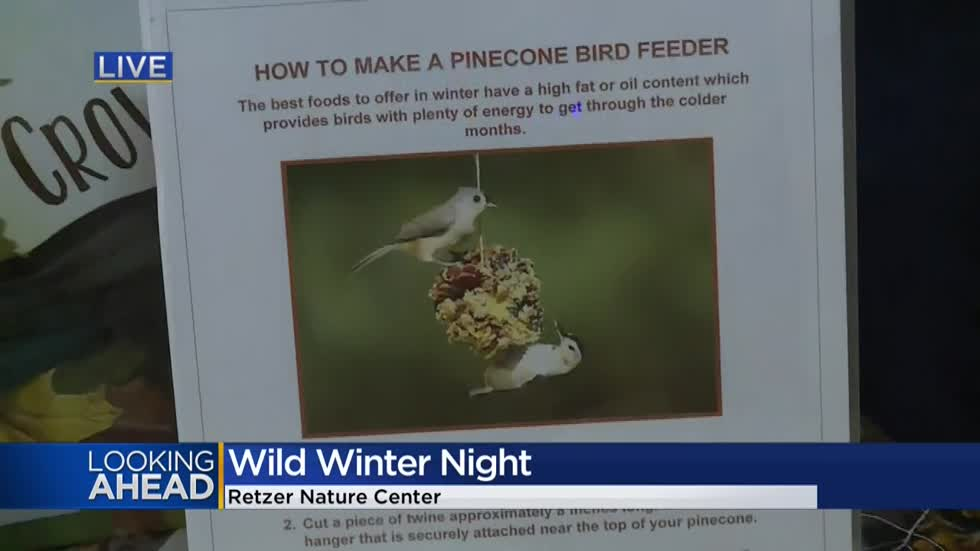 'Wild Winter Night' at Waukesha's Retzer Nature Center is for the birds!