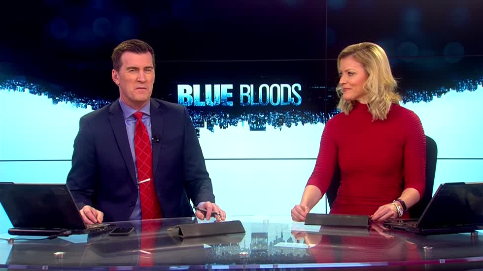 "Cast says family moments on ""Blue Bloods"" makes show a success"