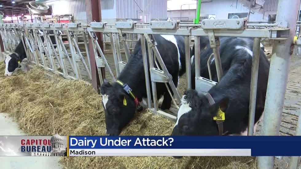 WI dairy farmers react to Joaquin Phoenix comments