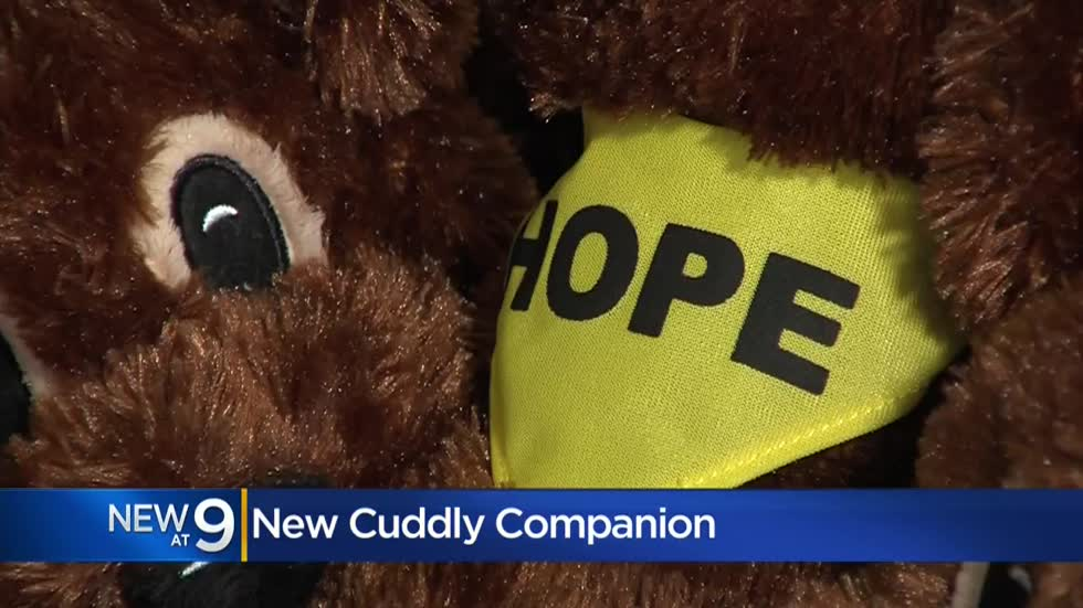 'A Dog Named Hope:' Children's Hospital cancer patients receive plush dog, children's book