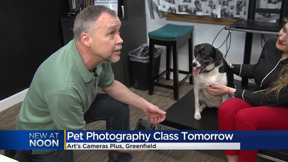 Greenfield camera shop teaches how to achieve the perfect pet picture