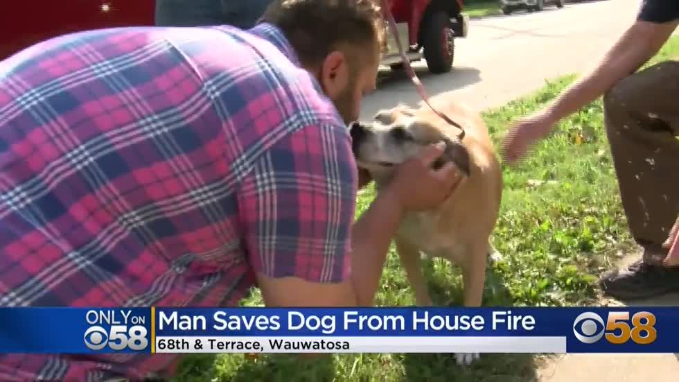 'Just glad I was here:' Good Samaritan saves beloved rescue...