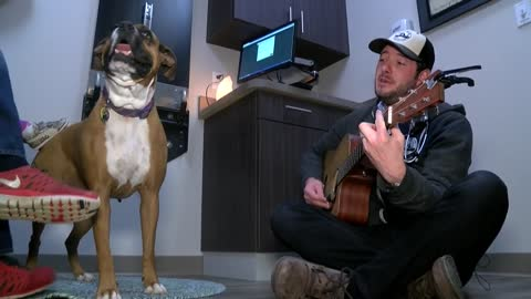 Shorewood veterinarian uses singing talents to put patients and owners at ease