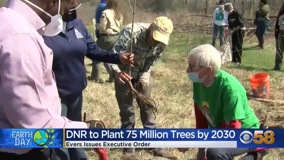 Evers' order calls for planting 75 million trees before 2031🌳