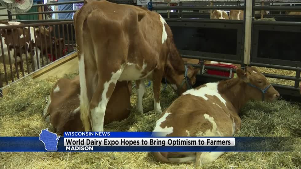World Dairy Expo hopes to bring optimism to farmers in Madison